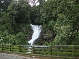Kadambi_falls1